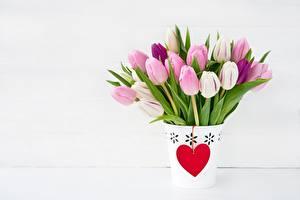 Картинки Тюльпаны День всех влюблённых Сердечко Цветы