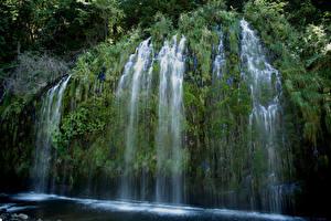 Обои США Водопады Калифорния Скала Мох Mossbrae falls Природа картинки