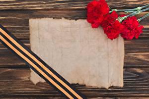 Обои 9 мая Гвоздики Шаблон поздравительной открытки Ленточка Цветы