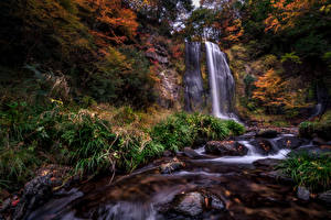 Картинки Водопады Камни Осенние Утес Природа