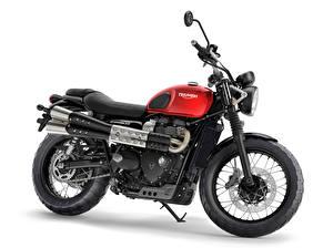 Обои Белый фон Сбоку 2016-19 Triumph Street Scrambler Мотоциклы