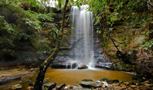 Картинки Австралия Водопады Камень Утес Ствол дерева Мох Morton National Park