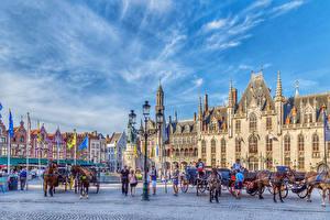 Фотография Бельгия Дома Лошадь Брюгге Городская площадь Уличные фонари Города