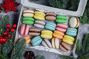 Фотография Печенье Макарон Разноцветные Пища
