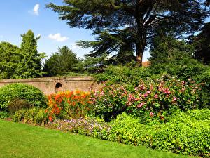 Обои Англия Парк Лондон Кустов Деревья Трава York House Gardens Природа
