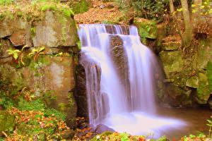 Картинки Англия Водопады Скала Мха Lower Lumsdale Matlock Derbyshire Природа