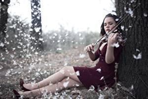Картинка Перья Скрипка Ноги Сидит Платье молодые женщины