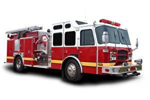 Обои Пожарный автомобиль Белый фон Автомобили