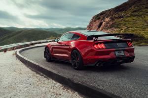 Картинки Ford Красная Вид сзади Mustang Shelby GT500 2019 Автомобили