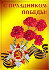 Фото Праздники День Победы Гвоздики Звездочки Лента Русские
