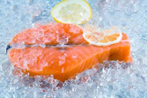 Картинки Лимоны Рыба Лососи Лед Продукты питания