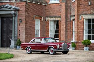 Фотографии Mercedes-Benz Винтаж Бордовый Купе 1959-65 220 SEb Coupe Автомобили