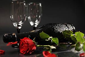 Картинка Розы Шампанское Сером фоне Красная Лепестков Бутылка Бокал Капли