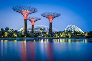 Картинки Сингапур Парки Вечер Залив Дизайн Gardens by the Bay Природа
