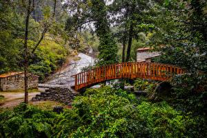 Обои Испания Парк Река Мосты Деревья Barro Galicia Природа
