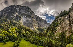 Обои Швейцария Горы Леса Альп Скале Природа