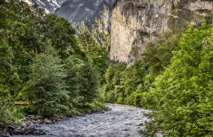 Картинки Швейцария Реки Леса Утес