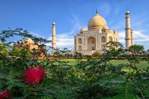 Картинка Тадж-Махал Индия Шафран Agra