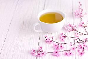 Картинка Чай Чашке Сакуры Доски Продукты питания