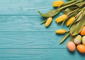 Картинки Тюльпаны Пасха Яйцо Доски цветок