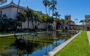 Обои США Парки Дома Пруд Сан-Диего Пальмы Balboa Park