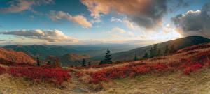Фото Штаты Пейзаж Поля Холм Кусты Avery North Carolina Природа