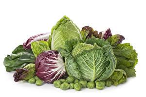 Фотография Овощи Капуста Белый фон Пища