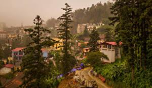 Фотографии Вьетнам Дома Ели Дерева Sapa Города