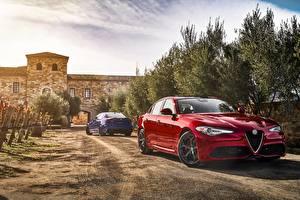 Картинки Альфа ромео Красный Giulia Автомобили
