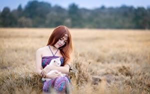Фотографии Азиаты Кошка Шатенка Сидит Девушки