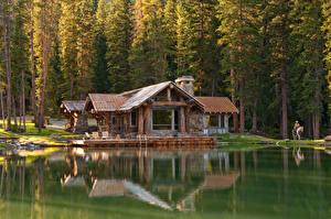 Фотография Австрия Леса Озеро Здания Ель Magdalensberg Природа