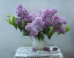 Картинки Букет Сирень Скатерть Ваза Цветы