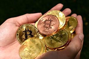 Фото Монеты Деньги Bitcoin Вблизи Руки Золотой