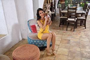 Обои Собака Melisa Mendiny Брюнеток Сидит Улыбается Ног Туфли молодые женщины