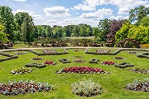 Фотографии Германия Парки Пруд Газоне Дизайн Wiesenburg Castle Park Природа