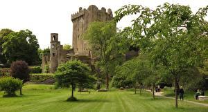 Фото Ирландия Замки Крепость Трава Деревья Blarney Castle, county Cork Города