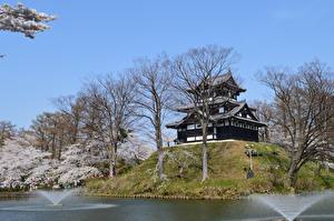 Картинка Япония Замки Парки Дерева Takada Castle, Niigata Города