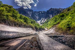 Фотографии Япония Горы Леса Дороги Tanigawa Природа