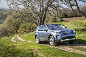 Картинка Range Rover SUV Голубых 2019 Discovery Sport P250 S Worldwide авто