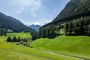 Картинки Горы Лес Луга Австрия Tyrol Природа