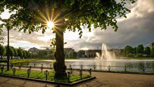 Фотография Норвегия Фонтаны Пруд Берген Дерева Лучи света Города