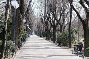 Картинки Парк Румыния Скамейка Дерева Уличные фонари Аллеи Тротуар Bucharest Города