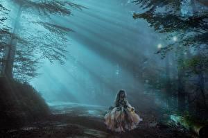 Фото Дороги Леса Девочка Туман Лучи света Фэнтези