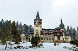 Обои для рабочего стола Румыния Замки Зима Снег Дерева Peles Castle Города