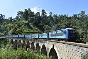 Обои Шри-Ланка Мост Поезда