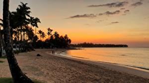 Фотографии Рассвет и закат Вечер Доминиканская Республика Пляже Пальм Las Terrenas Природа