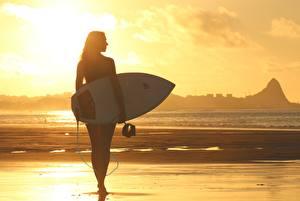 Фотографии Рассвет и закат Серфинг Пляже Силуэт спортивный Девушки