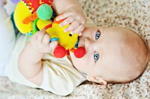 Фотографии Игрушки Младенца Смотрит Дети