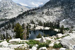 Картинки Штаты Парк Гора Озеро Камень Пейзаж Ели Sequoia National Park Природа