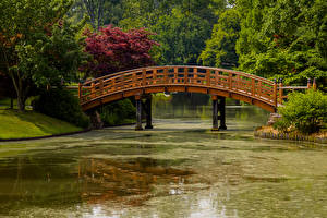 Картинки Штаты Парк Пруд Мосты Missouri Botanical Garden Природа